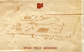 Sinai Field Mission (SFM)   Texan Tales & Hieroglyphics